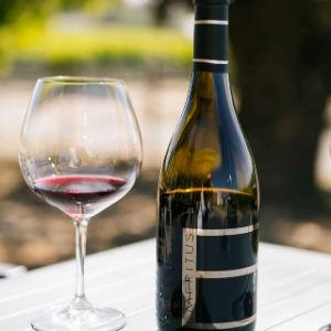 Central Sonoma County Wineries 2018 S Best Sonoma Com