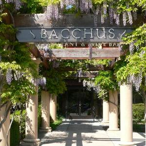 Bacchus Restaurant & Wine Bar