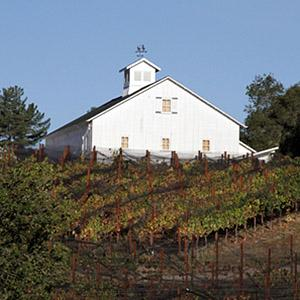 Galante Vineyards