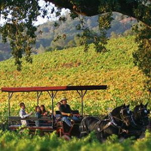 Wine Carriage