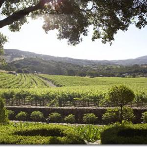 Yountville Wineries 2018 S Best Napavalley Com