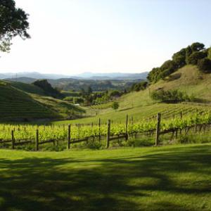 Richard Perry Vineyards