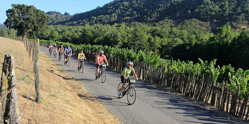 Half-Day Sonoma Valley Bike Tour - $98 per person!
