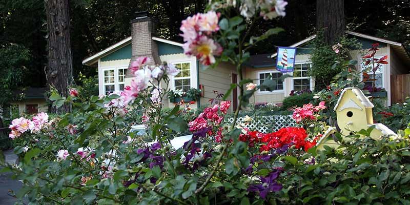 Fern Grove Cottages Guerneville Ca Sonoma Com