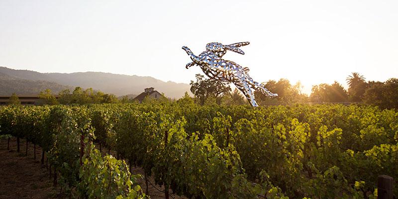 HALL Wines – St. Helena – St. Helena, CA – NapaValley.com