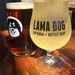 Lama Dog Tap Room