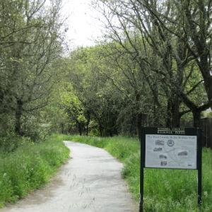 Joe Rodota Trail