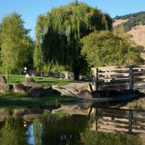 Rincon Valley Community Park