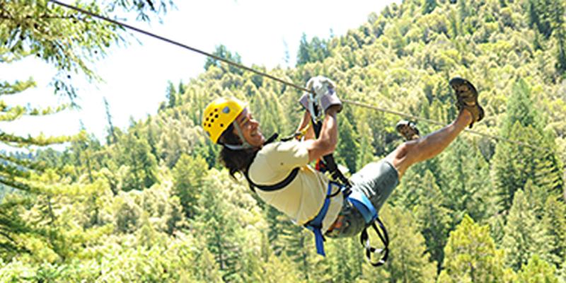 Sonoma Canopy Tours. Previous Next  sc 1 st  Wine Country & Sonoma Canopy Tours u2013 Occidental CA u2013 WineCountry.com