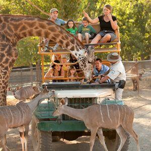 Safari West Calistoga Ca Winecountry Com
