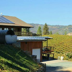 Gold Hill Vineyard & Brewery
