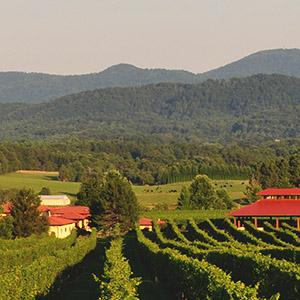 Afton Mountain Vineyards