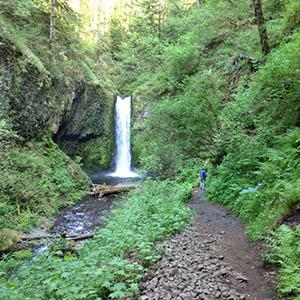 Eco Tours of Oregon