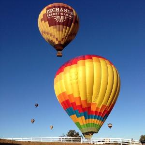 A Grape Escape Hot Air Balloon Adventure