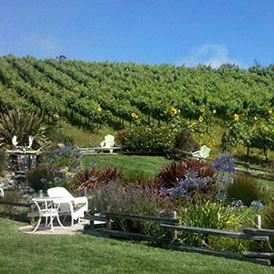 Hunter Hill Vineyard & Winery