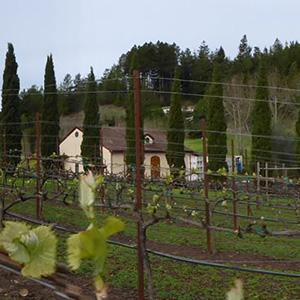 Soquel Vineyards